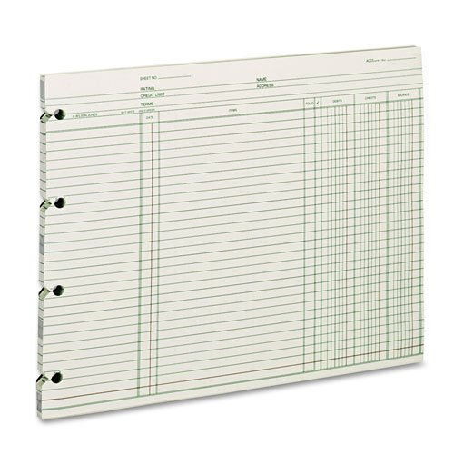 Accounting, 9-1/4 x 11-7/8, 100 Loose Sheets/Pack, Sold as 100 Sheet