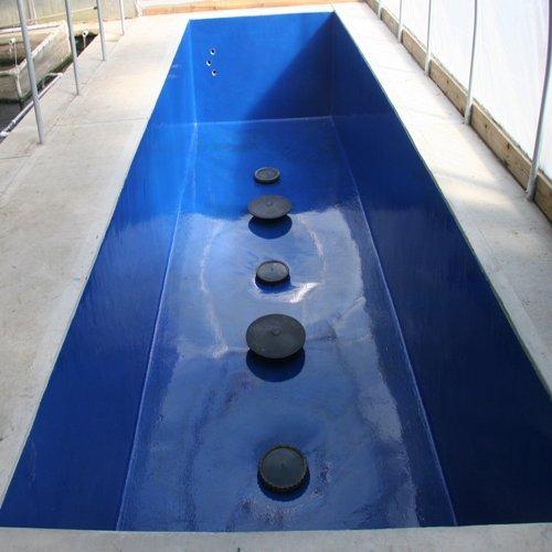 Pond Armor SKU-CBLUE-3GA Non-Toxic Pond Shield Epoxy Paint, 3-Gallon, Competition Blue by Pond Armor (Image #4)