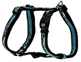 Rogz Fancy Dress Large 3/4-Inch Beachbum Adjustable Dog H-Harness, Turquoise Chrome Design, My Pet Supplies