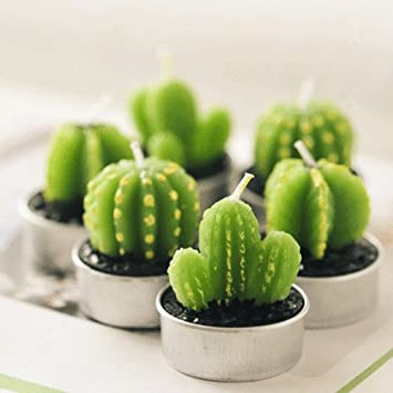 A Fun Cactus Candles Succulent Plants Mini Tealight Candles For Home Decor Unscented Smokeless