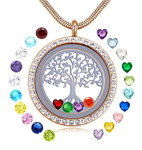 JOLIN Family Love Always and Forever, 18k Gold Tree of Life Locket Necklace for Girls Women, Floating Memory Pendant with 24PCS Birthstones, Pretty Box, Greeting -