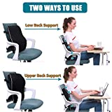 Lumbar Support Pillow for Office Chair Car Memory