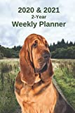 2020 & 2021 Weekly Planner | Two Year Appointment Book Gift | Two-Year Agenda Notebook for Bloodhound Dog Owners: Cover Month Calendar: 2 Years of ... Work, Personal, Dog Training Schedule, etc.