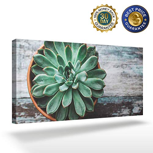 OUR WINGS Canvas Print Wall Art Decor Succulents Placed On The Table Wall Art Painting The Picture Print On Canvas for Home Modern Decoration 8x16in]()