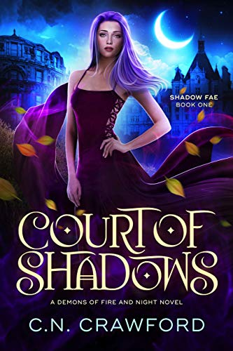 Court of Shadows (Shadow Fae Book 1)