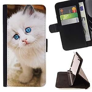 KingStore / Leather Etui en cuir / Apple Iphone 6 PLUS 5.5 / Ragdoll American Curl Angora