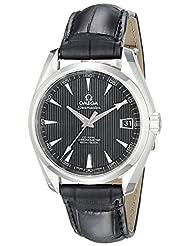 Omega Aqua Terra Automatic Men's Watch 231.13.39.21.01.001