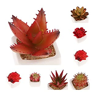 Fityle 4 Pcs Assorted Potted Green Succulents Plants Decorative Artificial Succulent Potted Faux Cactus Aloe Lotus Potted, Display Tray on Desk, Shelf, by Window 10