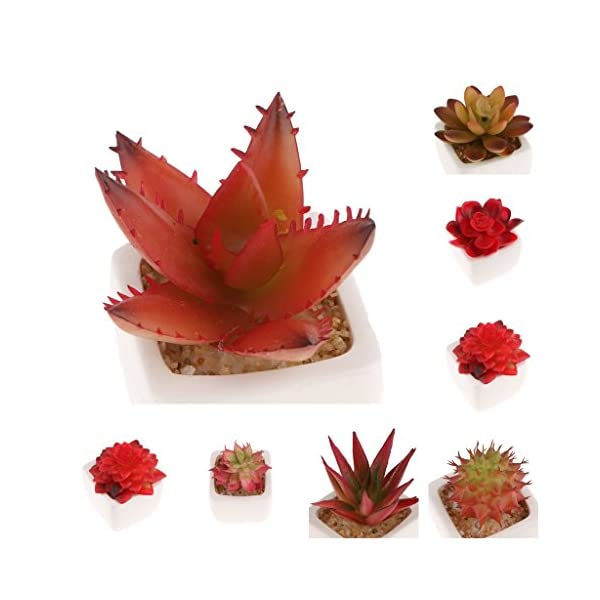 Fityle-4-Pcs-Assorted-Potted-Green-Succulents-Plants-Decorative-Artificial-Succulent-Potted-Faux-Cactus-Aloe-Lotus-Potted-Display-Tray-on-Desk-Shelf-By-Window