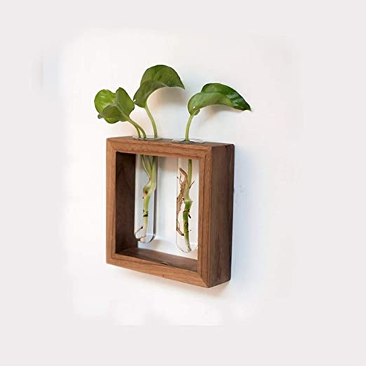 TIANQIZ Flor Creativa Estante De La Pared Pared Planta Estantes ...