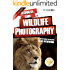 Beginners Guide to Wildlife Photography (Beginners Guide to Photography Book 8)