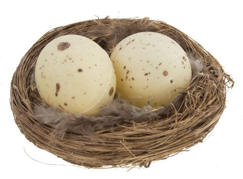 3 Inch Natural Twig Bird Nest With Eggs and Feathers -Great for Wedding Favors, Party Favors, Florals or Baby Showers ()