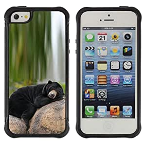 BullDog Case@ Bear Sleepy Alaska Black Nature Green Rugged Hybrid Armor Slim Protection Case Cover Shell For iphone 5S CASE Cover ,iphone 5 5S case,iphone5S plus cover ,Cases for iphone 5 5S