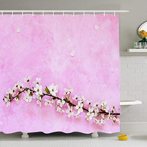 (Ahawoso Shower Curtain 72x72 Inches Petal Pink Apricot White Cherry Spring Flowers On Greetingcard Apple Nature April Bloom Blooming Waterproof Polyester Fabric Bathroom Curtains Set with Hooks)