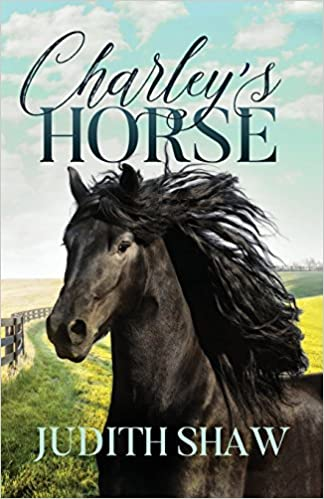 Charleys Ride - a horse story