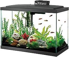 Small Fish Tanks The Aquarium Guide