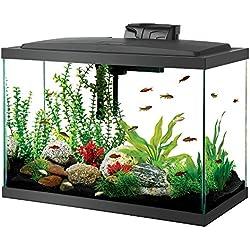 Aqueon Aquarium Fish Tank Kit, 20 gallon