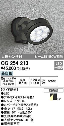 オーデリック/ODELIC/エクステリアライト/OG254213 B00751LE84 19197