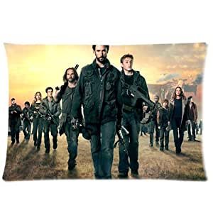 WXSTAR Soft And Comfortable Falling Skies Custom Zippered Pillow Cases 20x30 (Twin sides)