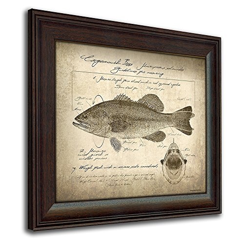 Largemouth Bass Vintage Fish Identification Scoring Print - 14in x 17in Framed Behind Glass - Fishing Framed Print