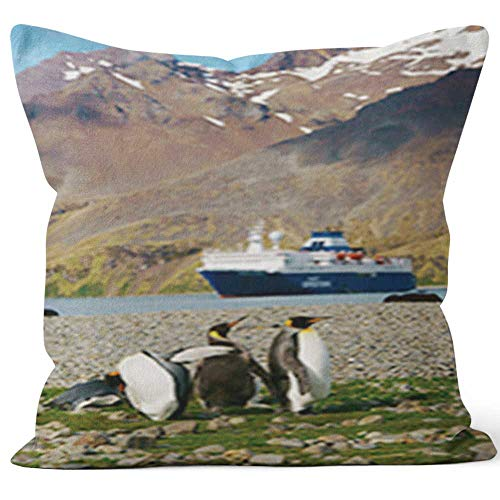 Nine City King Penguins at Beach South Georgia Throw Pillow Cover,HD Printing for Sofa Couch Car Bedroom Living Room D¨¦cor,24