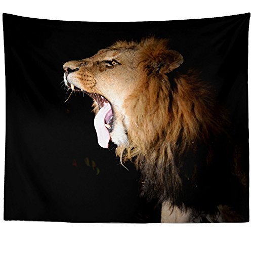 Picture Lion Roar (Westlake Art - Lion Roar - Wall Hanging Tapestry - Picture Photography Artwork Home Decor Living Room - 68x80 Inch (2C767))