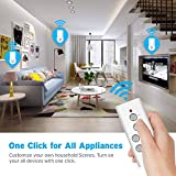 Etekcity Remote Control Outlet Wireless Remote