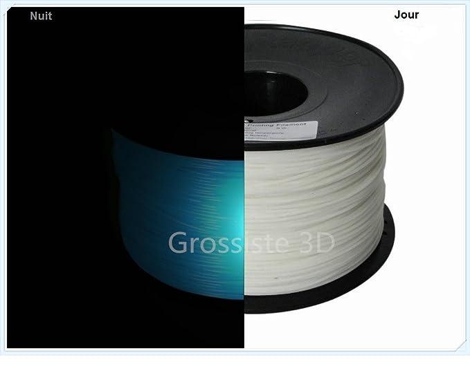 Filament 3D Phosphorescent Bleu PLA 1.75 mm pour imprimante 3D ...
