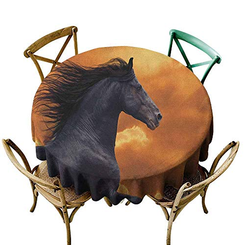 Spill-Proof Table Cover Horses Portrait of Galloping Friesian Horse with Hot Sun Rays Intensity Honor Grace Theme Black Orange Modern Minimalist 50 INCH ()