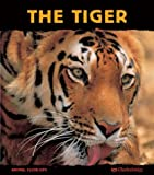 img - for The Tiger: Ferocious Feline (Animal Close-Ups) book / textbook / text book