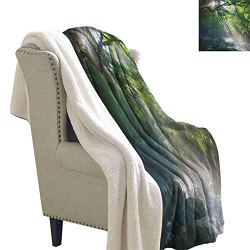 Rainforest Bed Cover Stream in The Jungle Stones Under Shadows of Trees Sun Rays Mother Earth Theme Blanket Small Quilt 60x47 Inch Green White