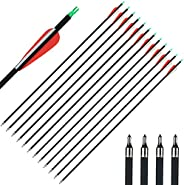 IRQ Archery 32Inch Carbon Arrow Practice Hunting Arrows with Removable Tips for Compound & Recurve Bow(Pac