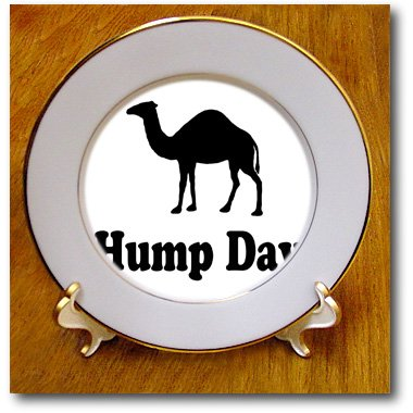 3dRose cp_159637_1 Hump Day. Camel. Wednesday-Porcelain Plate, 8-Inch