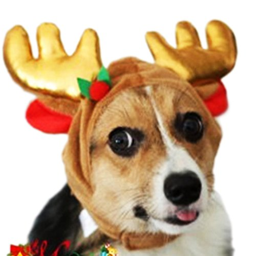 Moe Halloween Costume (Gimilife New Christmas Pet Santa Reindeer Hat Costume For Small Medium Cats and Dogs (Style one, M))