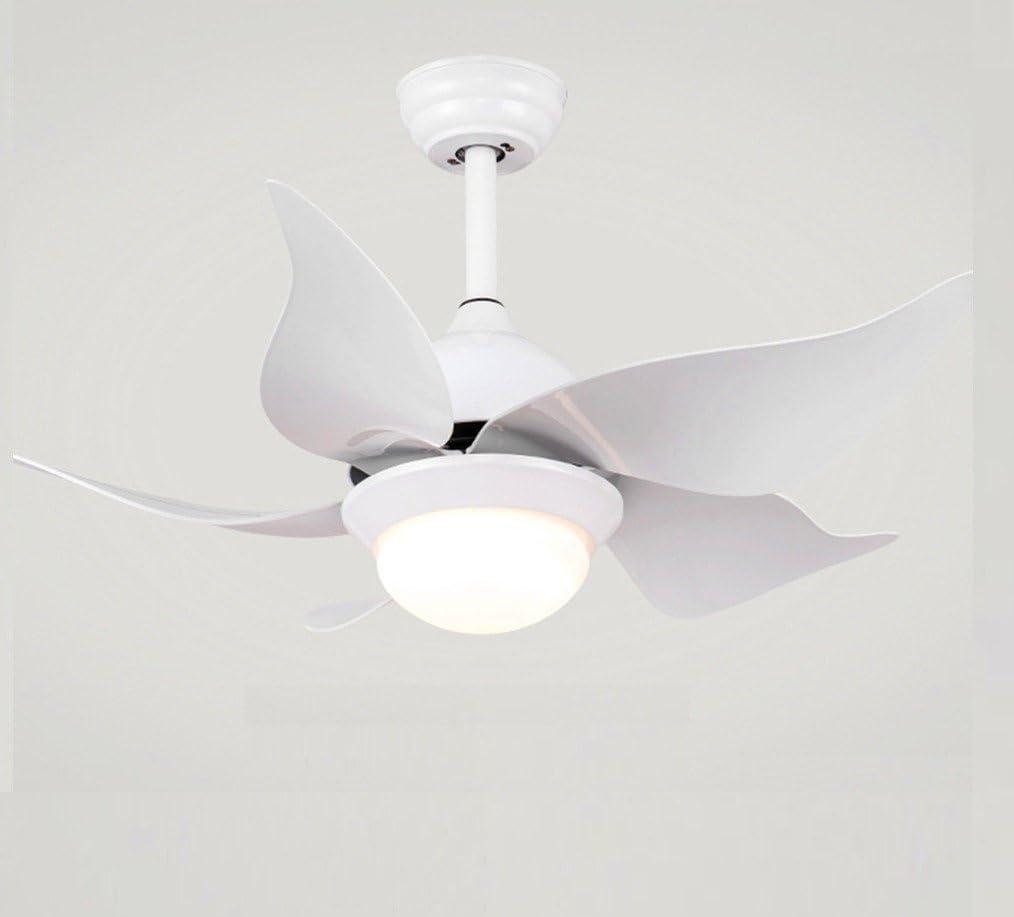 Sadasd - Lámpara de techo con diseño de dibujos animados con ...