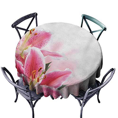 (Lcxzjgk Easy Care Tablecloth Pink and White Florist Theme with Lilies Close Up A Fresh Bouquet for The Loved Ones Pink Orange Green Easy to Clean D67)