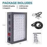 MAXSISUN 600W LED Grow Light, Full Spectrum LED