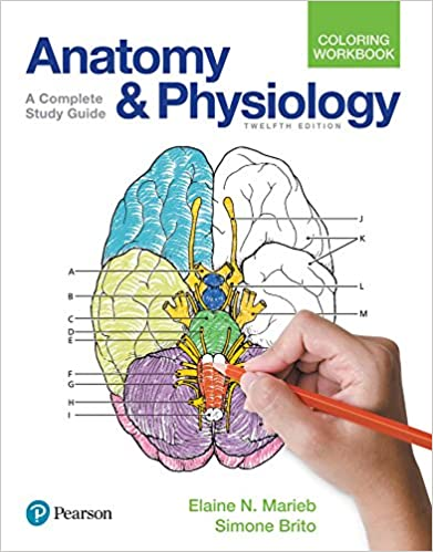 Anatomy and Physiology Coloring Workbook: A Complete Study Guide 12 ...
