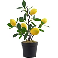 #N/A Artificial Fruit Pomegranat Or Lemon Tree Bonsai for Wedding Party Home Decor - Lemon L, as described