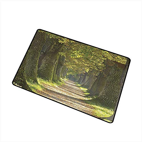 Mdxizc Washable Doormat Vivid Environment Decor Alley with Oak Trees Scenic Perspective Picture W35 xL47 Quick and Easy to Clean Green Olive and - Three Olives Vodka Prices
