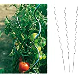Benelando® Tomaten-Spiralstab 180cm Stahl verzinkt - 2. Wahl (3)