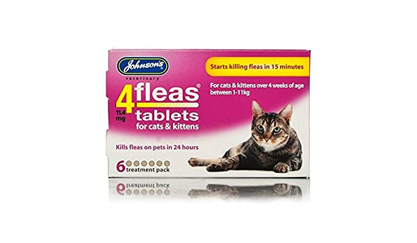 Johnsons 4 fleas Tablets para gatos y gatitos, comienza Killing pulgas en 15 min, 6 tabletas: Amazon.es: Productos para mascotas