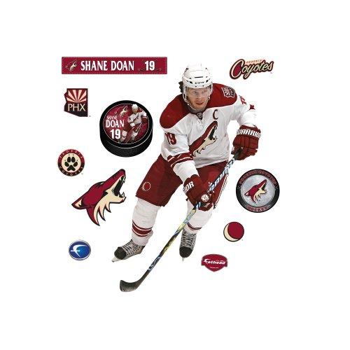 NHL Phoenix Coyotes Shane Doan Wall Graphic