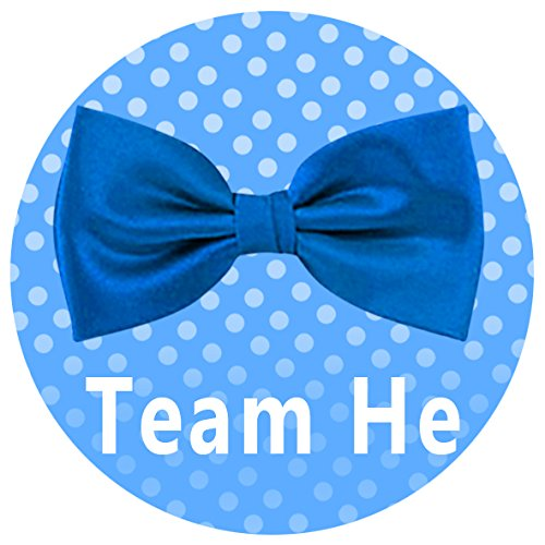 Qyler Gender Reveal Party Labels Baby Shower Voting Stickers Team Blue /& Team Pink