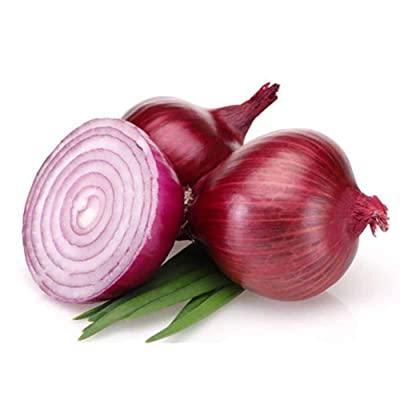 100PCS Onion Seeds Bonsai Flowers, Easy to Grow Home Garden Vegetable Organic for Planting : Garden & Outdoor