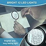 Magnifying Glass with 12 LED Lights, 30X Double