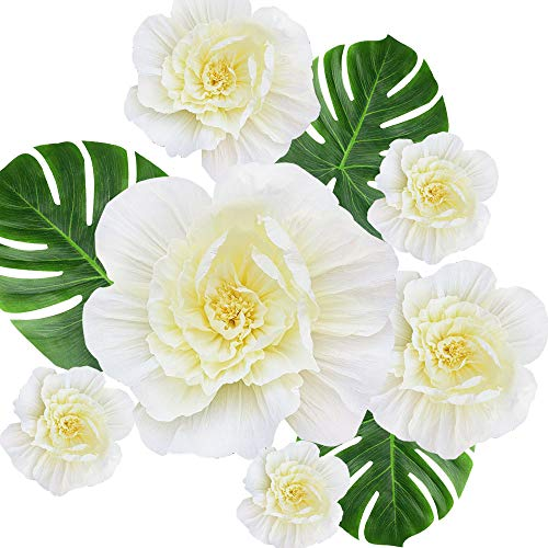 Awtlife 6 X Cream White Flowers Paper Flower Decorations Handmade Giant Crepe for Wall Nursery Wedding Baby Shower Birthday Centerpiece Photo Backdrop (Handmade Flowers Decoration)