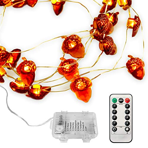 PGFUNNY LED String Lights 40 LEDs Acorn Lights String Battery Powered 10ft Copper Wire Lights for Thanksgiving Decor, Indoor Ourdoor Halloween Christmas Lights Tree Decorations with Dimmable Remote