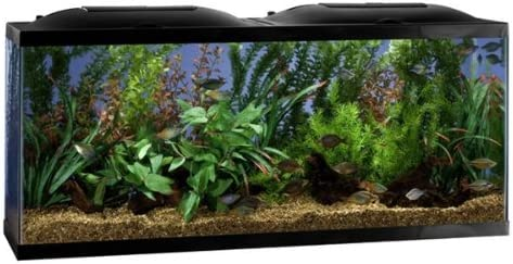 Marineland Aquaria 20-Gallon Fish Tank