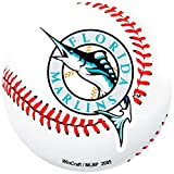 Florida Marlins - Baseball Logo In/out Magnet